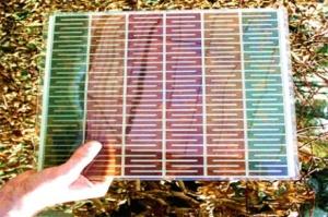 solar-panel-new-zealand