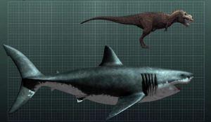 megalodon-shark